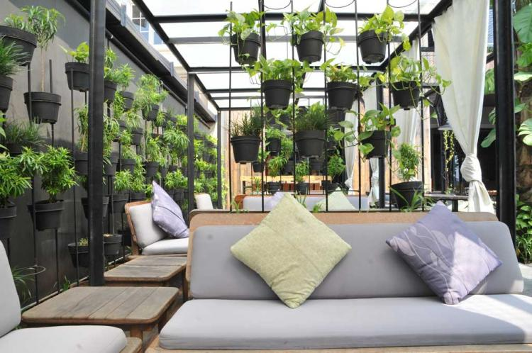 Taman Belakang Rumah Minimalis Dengan Pola Hiasan Bunga Gantung