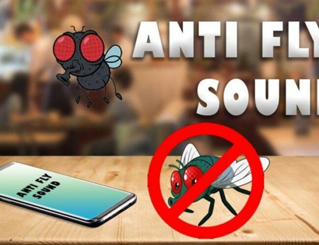 4 Aplikasi Pengusir Nyamuk Terbaik Untuk HP Android